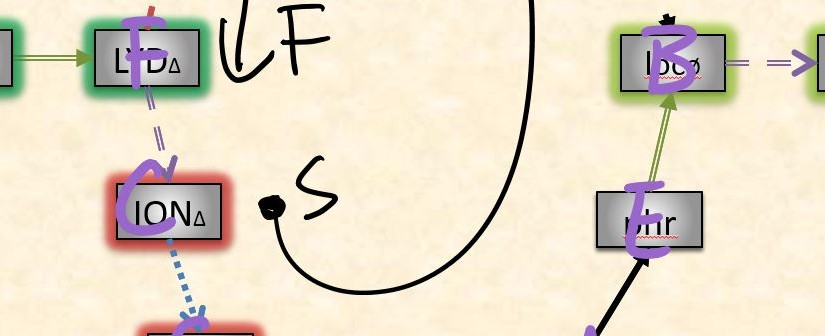 Little wheel study: clockwise and counterclockwise